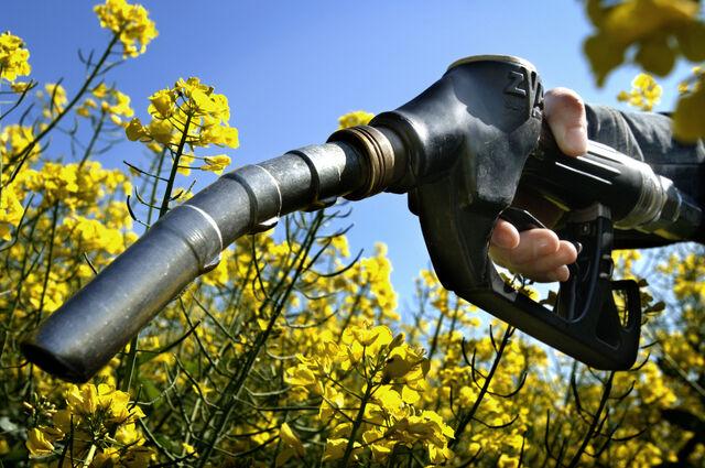 File:Biofuel.jpg