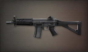 File:Weapon Pointman SG552.jpg