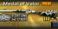 D.D. 10Ga., Medal of Valor