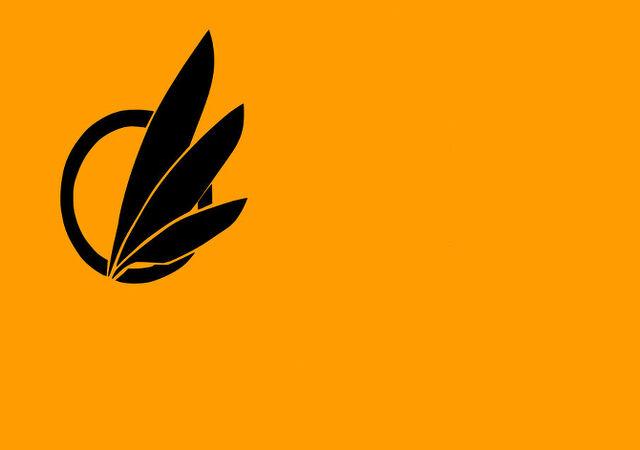 File:Avali banner.jpg