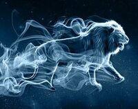 Lion Patronous