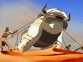 Appa captured.png