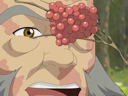 Maka'ole berries