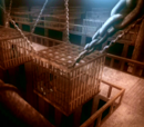 Hama's prison