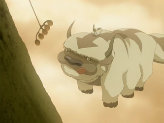 File:Appa and Momo.png