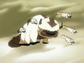 Appa's mother.png