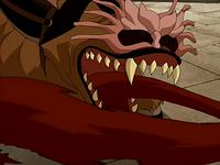 Shirshu's tongue