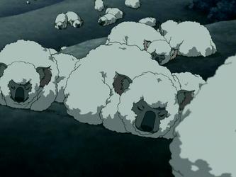 File:Sleeping koala sheep.png