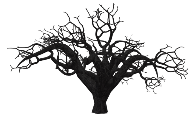 File:Treeoflife.png