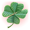 File:Lucky Shamrock.png