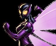 Beetle Dialogue