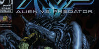 Alien vs. Predator: Whoever Wins...We Lose