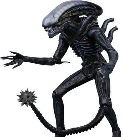 File:ALIENLOL.jpg