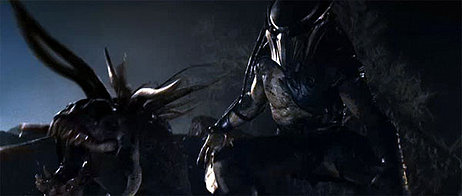 File:The predator (11).jpg