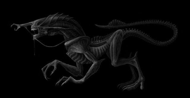 File:Pre alien by daobiwan-d3btw05.jpg