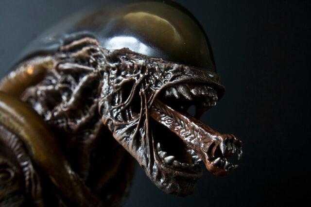 File:Alien pose 12.JPG