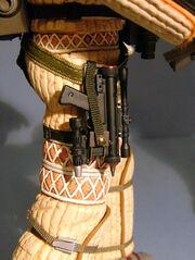 HTKanepistol holstered