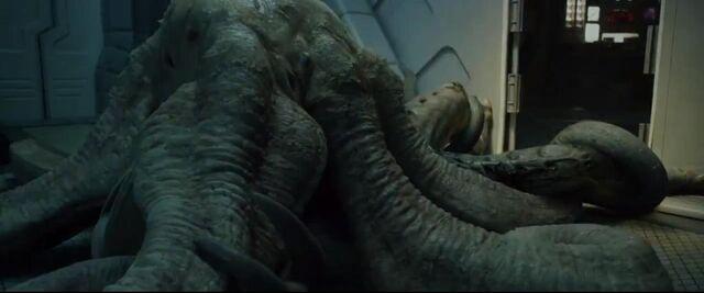 File:Trilobite3.jpg
