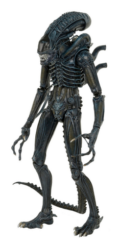File:NECA 1-4 Warrior.png