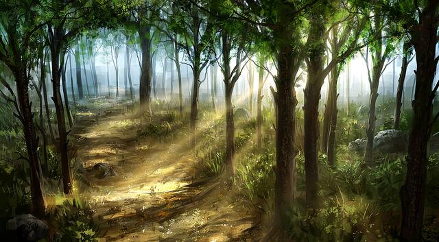 File:Solorian Woods.jpg