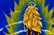 Super Saiyan 3 Goku from Back
