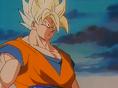 Goku gen