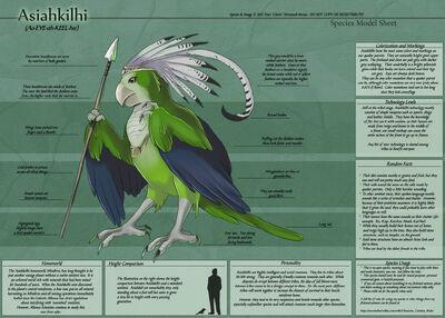 Asiahkilhi-SpeciesSheet