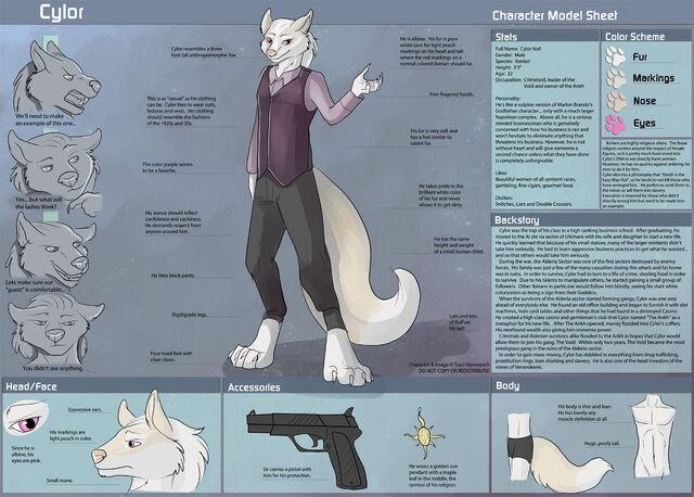 File:Cylor-CharacterSheet.jpg