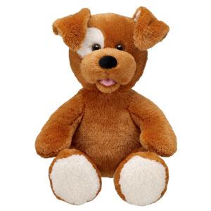 File:Brown sugar puppy2.jpg