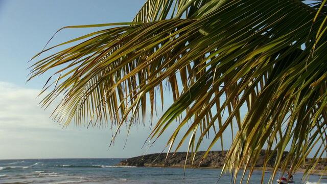 File:Teen-beach-movie-disneyscreencaps.com-2.jpg