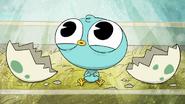 Icky Chicky (5)
