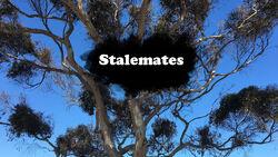 Stalemates TC