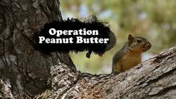 Operation Peanut Butter TC