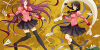 Bakemonogatari Episode 13: Tsubasa Cat, Part 3