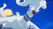 Reshiram-and-Zekrom-in-Best-Wishes-pokemon-14339777-450-243