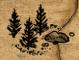 File:Area S Beregost logo.png