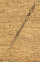File:Spear2.png