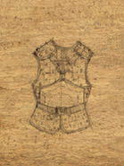 Leather Armor +3