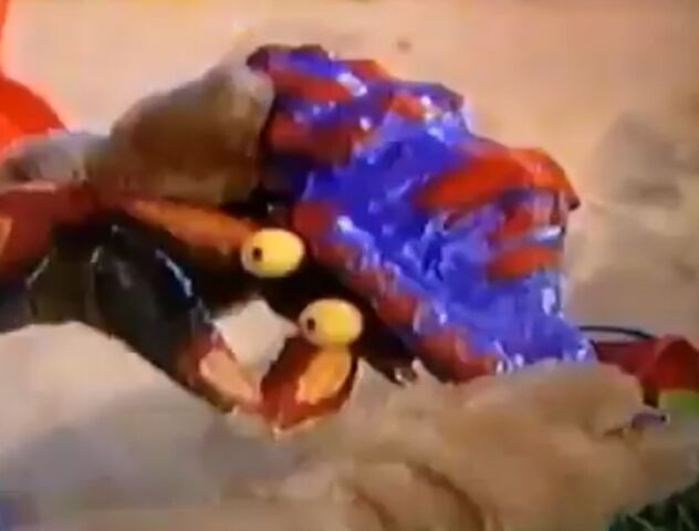 File:Amy holding a Crab.jpg