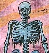 Adanna-skeleton