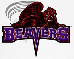File:CCNY Beavers.jpg