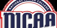 National Junior Collegiate Athletic Association