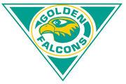 Felician Golden Falcons