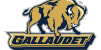 Gallaudet Bison