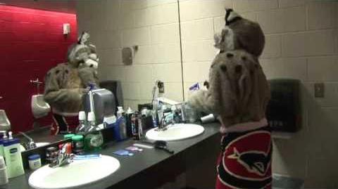 D. Baxter the Bobcat