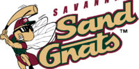 Savannah Sand Gnats