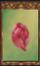 Celestial Flower Bud (Origins)