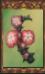 Thornflower (Origins)