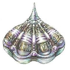 Magic Shellfish