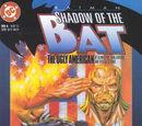 Batman: Shadow of the Bat 6